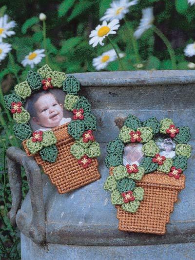 Flower Pot Frames photo