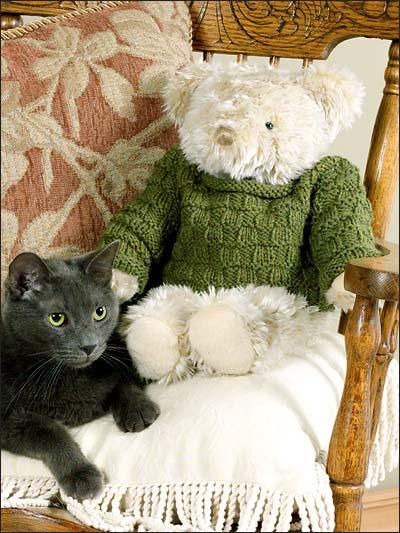 Teddy Bear Top photo