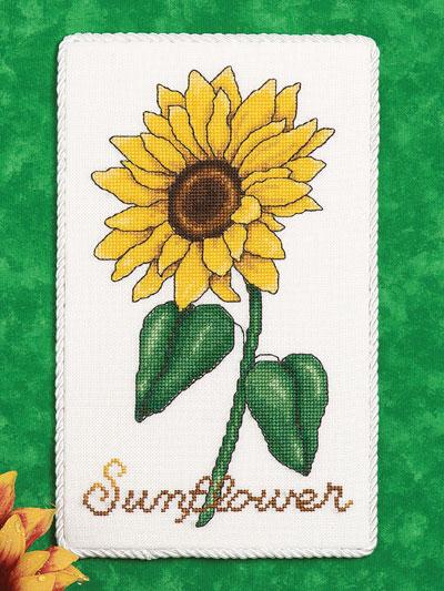 Sunflower Floral Plaque photo