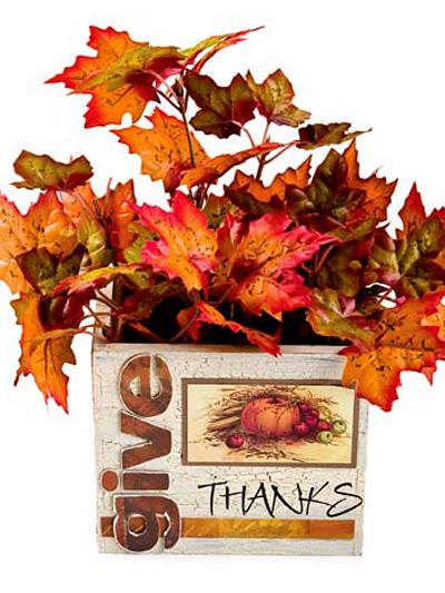 Give Thanks Box photo